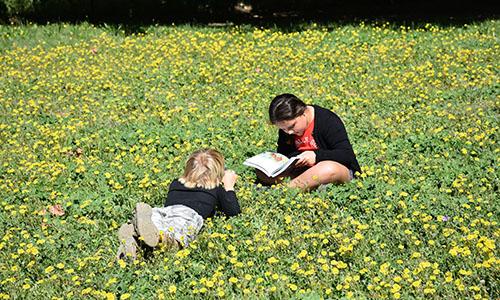 enfants qui lisent dans l'herbe